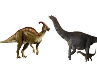 Dinossaurow by Manuela !onteiro