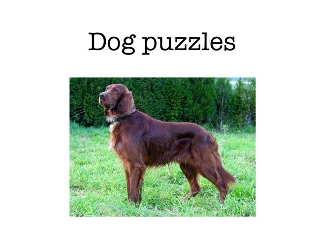 Dog Puzzles by Piper Kolafa