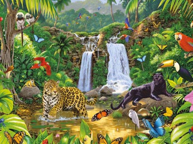 Dschungel by Bea Hodel