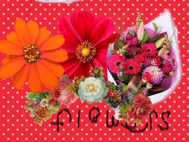 Flowers by Nancy Alomari