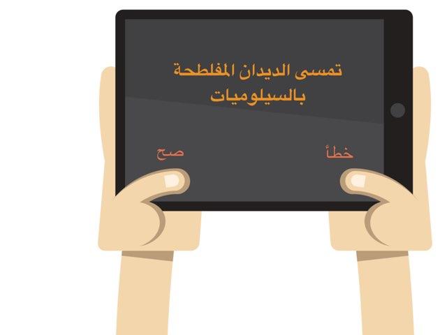 عاشر الديدان by Shaimaa Mohammed
