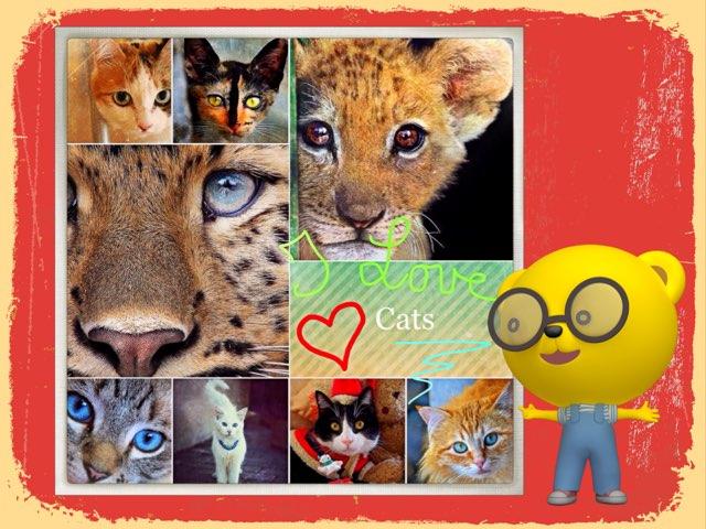 I Love Cats ! J'adore Les Chats ! by Ni Digicrea