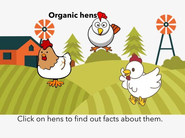 Organic Hen Facts  MM MW by Craig Miller