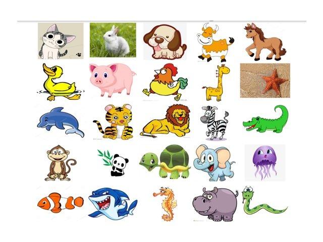 动物3 by Suwen He