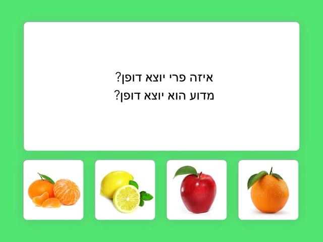 ״חושבים בריא״ - פירות וירקות by ziva dotan
