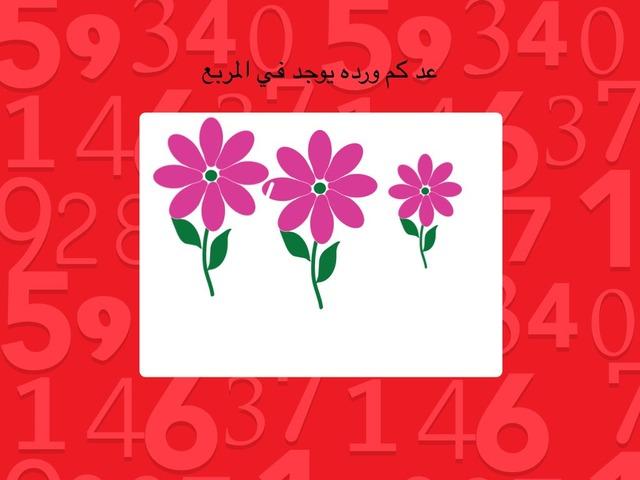 عد وتذكّر by Rasha Mresat