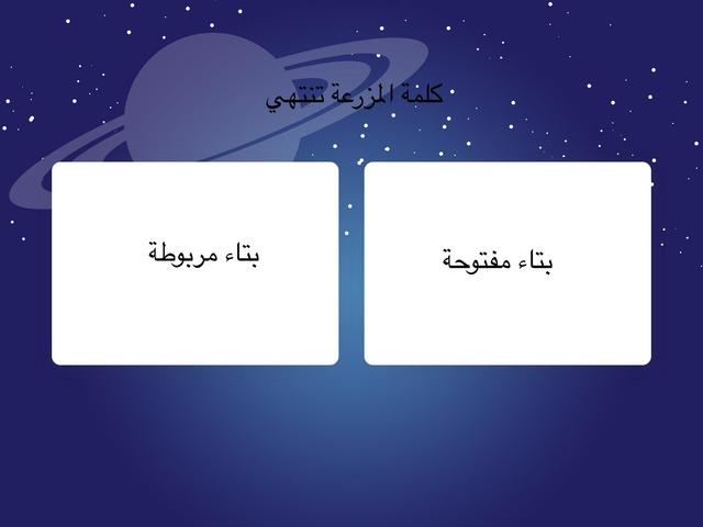 المزرعة by mohamed Swaed