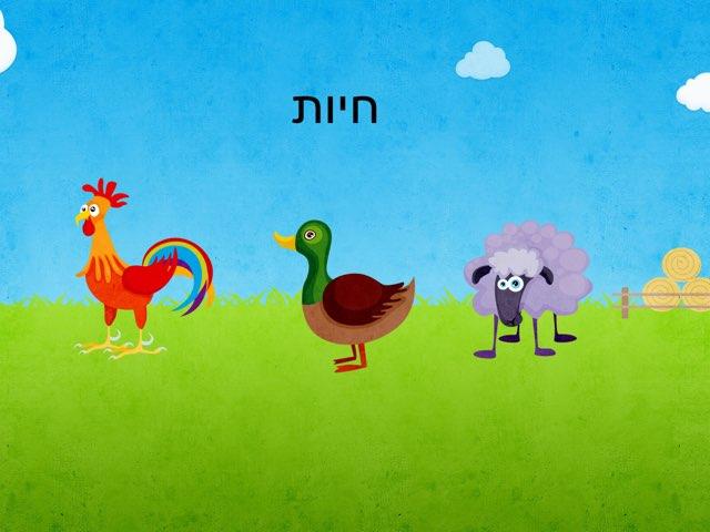 חיות דוגמה by ليال  مردي
