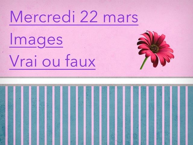 N - Mer22 - Images Et Vrai Faux by Caroline Gozdek