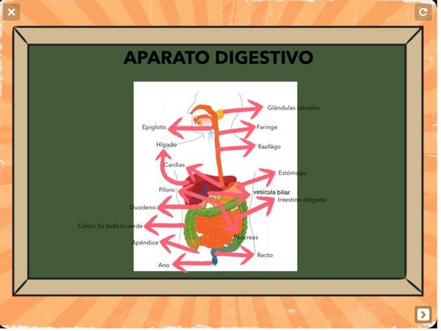 Aparatos by Pablo
