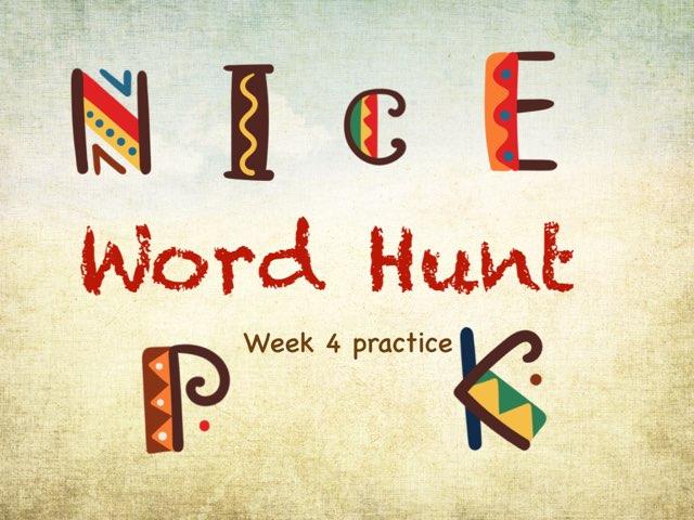 Word Hunt Phonics 2 Practice  by Tony Bacon