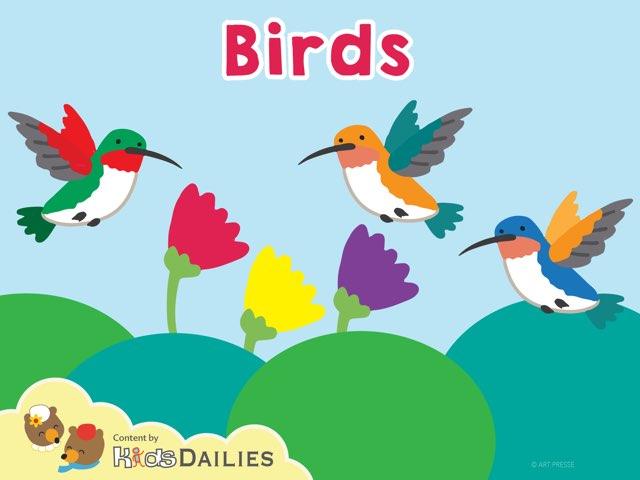 Birds by Kids Dailies