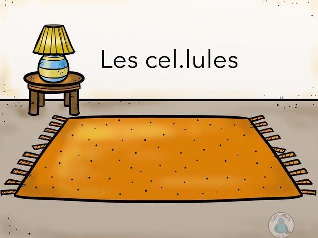 Les Cel.lules by PAULA GREGORI SAPINA