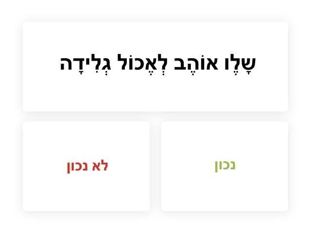 נכון או לא נכון - משפחה by Hadar Sabo