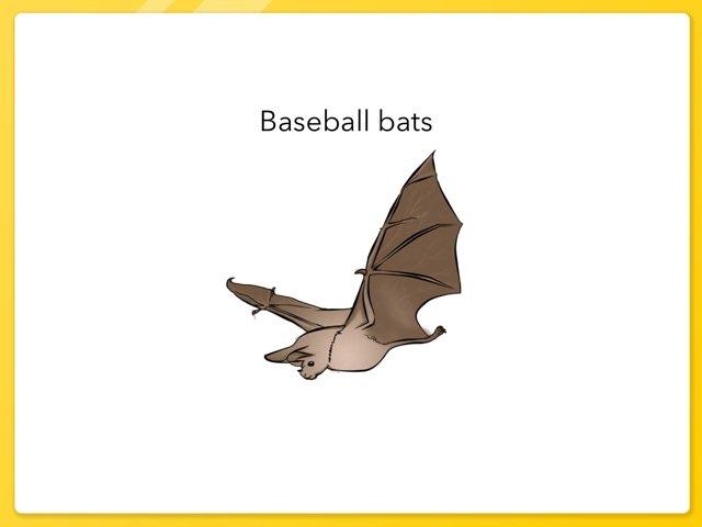 Baseball Bats  by Alisa Campbell