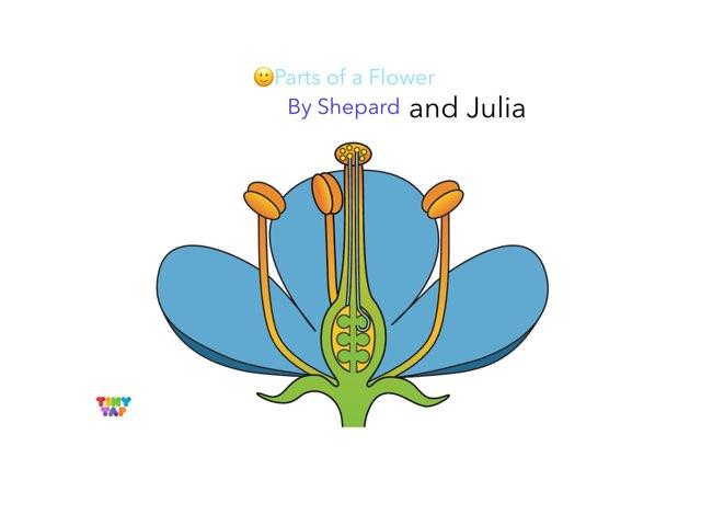 Julia & Shepard's Flower by Ashley Shaw