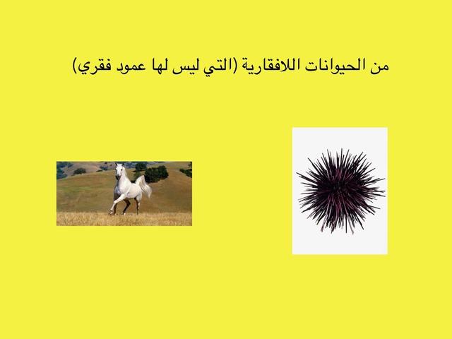 الصف الرابع الفصل الأول الوحدة الثانية by علي الزهراني
