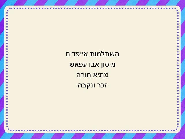 المذكر والمؤنث(1) by maysoon abu affash
