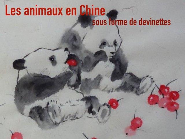 Les Animaux En Chine Sous Forme De Devinettes by Alice Turpin