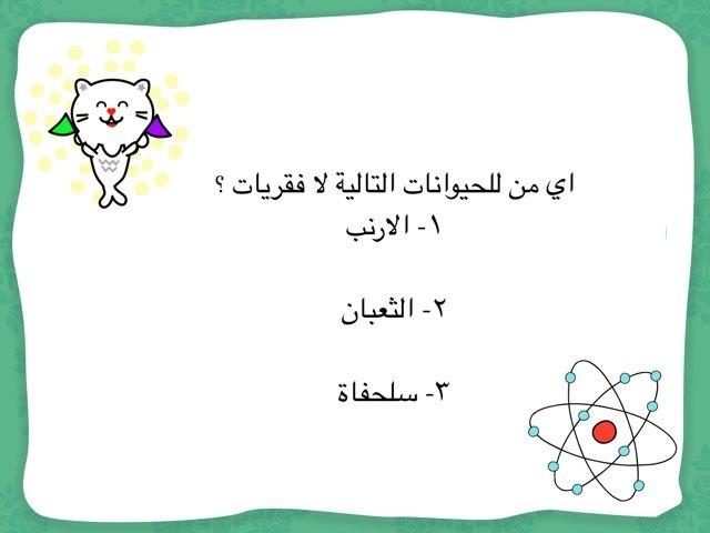 لعبة 28 by Aya Mohamed