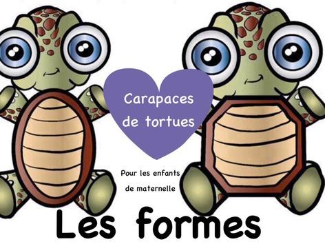 Tri des formes - Carapaces de tortues by Yara Habanbou