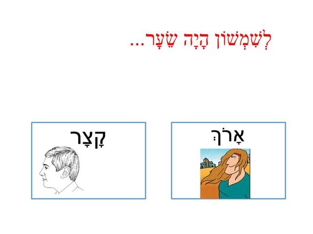 שמשון3 by keshatot keshatot