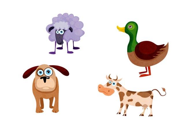 EAL Animal Names by Alanda phillips