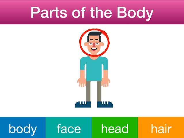 Parts of the Body  by Teeny Tiny TEFL