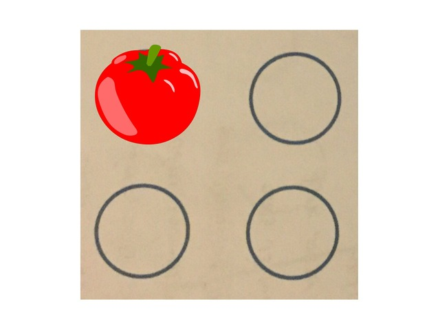 זיכרון חזותי 4 עיגולים (1) by Ganigar School
