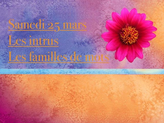 N - Sam25 - Les Intrus Et Familles by Caroline Gozdek