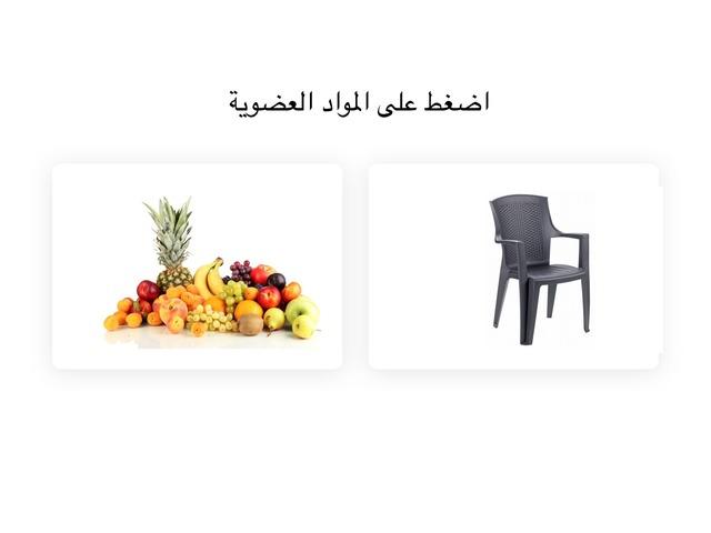 مواد عضوية ومواد غير عضوية by ענאב עיסמי