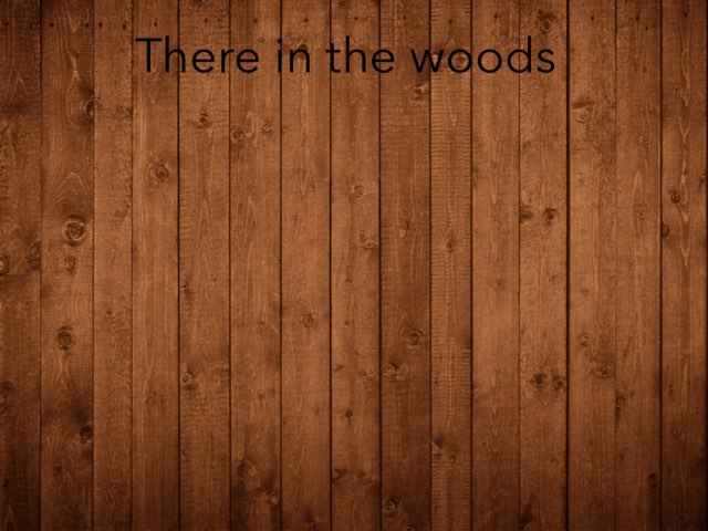 There In The Woods by Maia carter