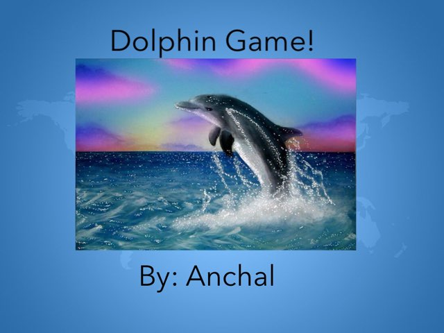 Dolphins By Anchal by Hulstrom 1st Grade
