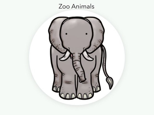 Zoo Animals by Tracy Barnes