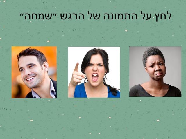 מבדק מערך רגשות מעודכן 02.2018 by Yuval Mazan