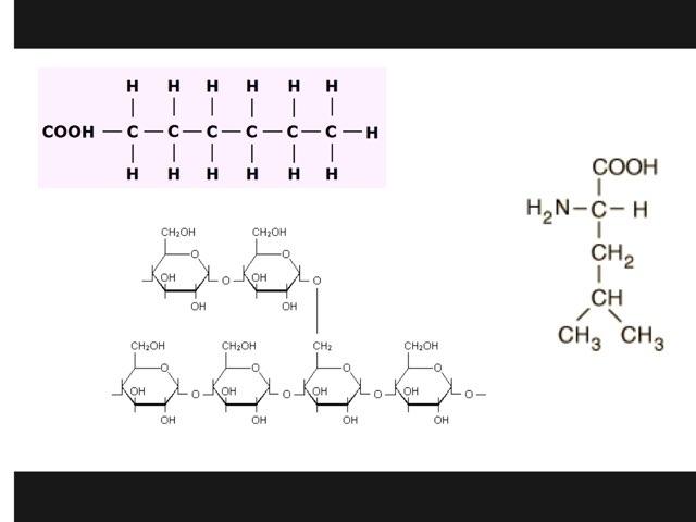 Biological Molecules by Sarah Schlussel