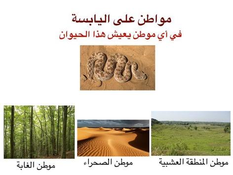 مواطن على اليابسة اول ابتدائي by علي الزهراني