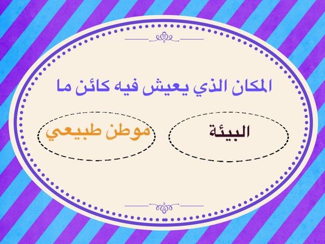 لعبة 27 by Sarah Ahmad
