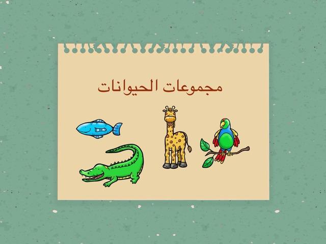 مجموعات الحيوانات by fatimhalsharif
