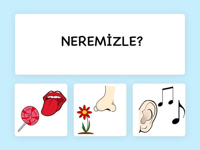 Neremizle? by Hadi  Oyna