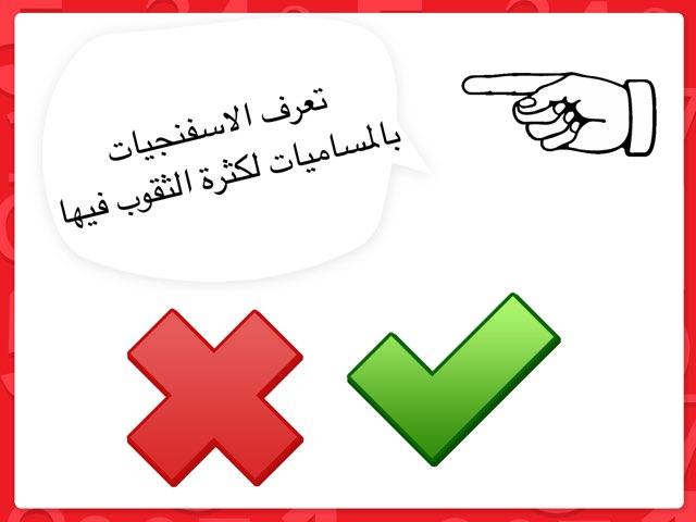 الصف العاشر by mariam yousef