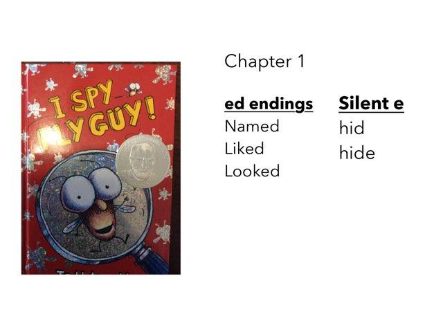 Fly ed-endings by Sarah Bosch