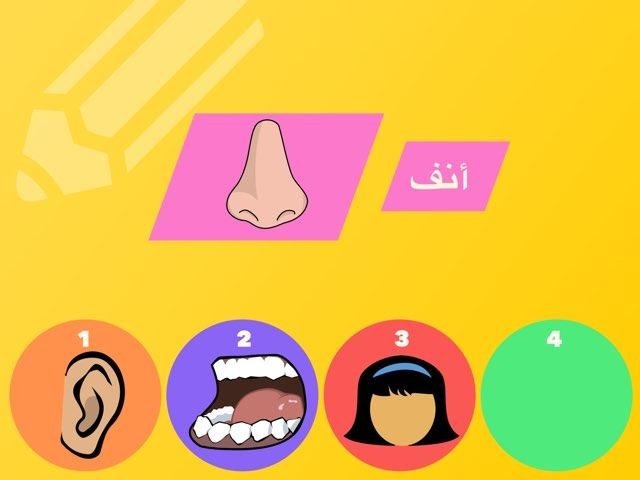 تجريد كلمة أنف وحرف أ by Rgooya Alm