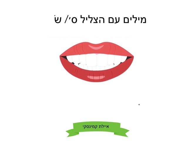 הצליל ס by Ayelet Levy Kaminsky