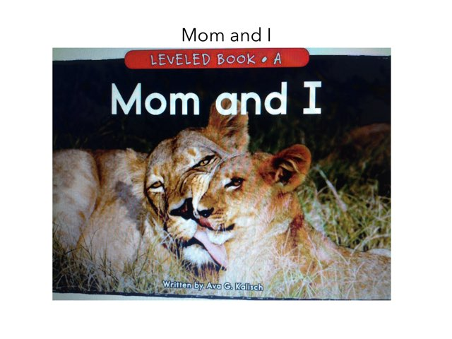 Mom And I Story Questions by Erin Previte