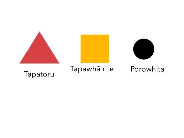 Shape In te reo Māori by Jenny Stoddard