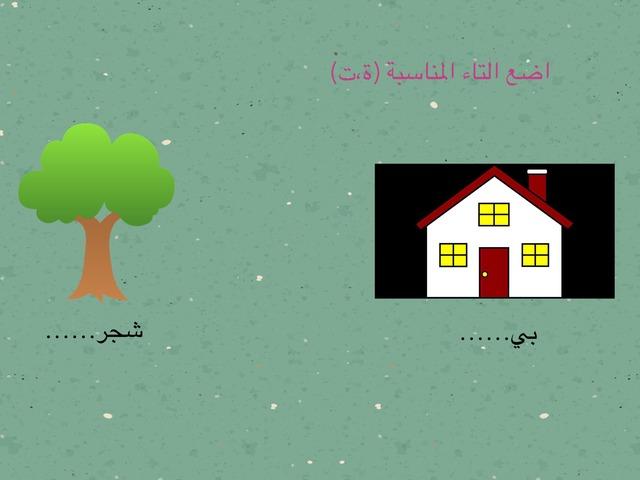 التاء المربوطة والهاء المربوطة  by HsUN الحضري