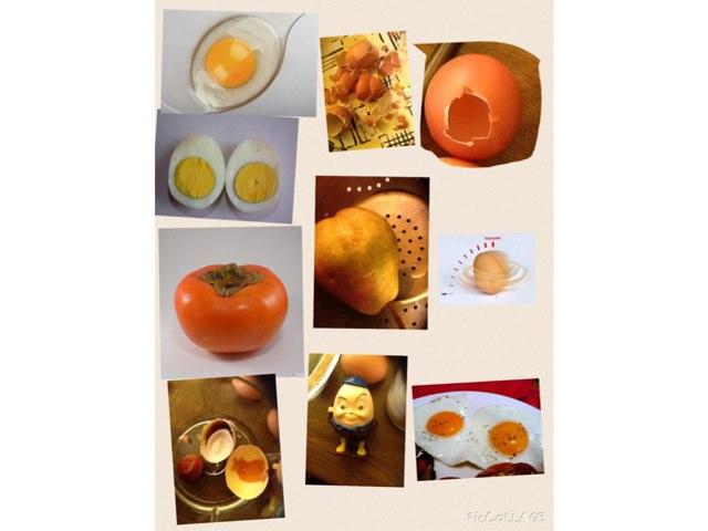 Eggs by Barbi Bujtas