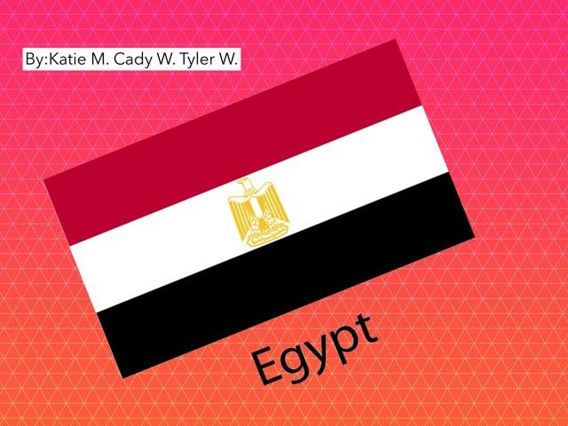 Egypt by Amanda Gripka