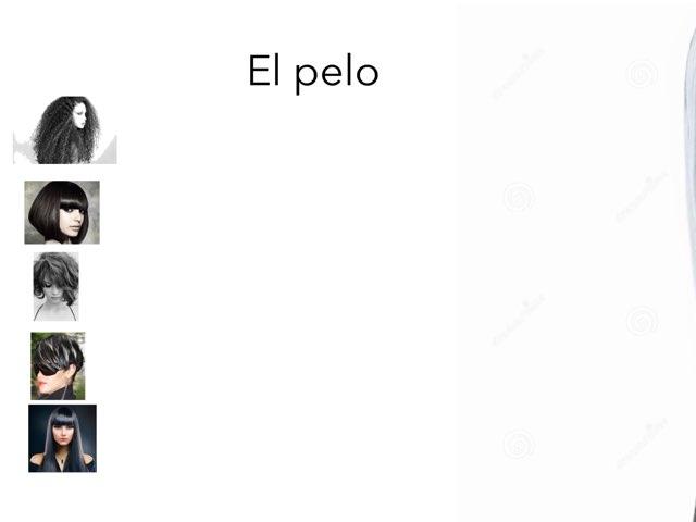El pelo. (spelling). by Mariela Triana
